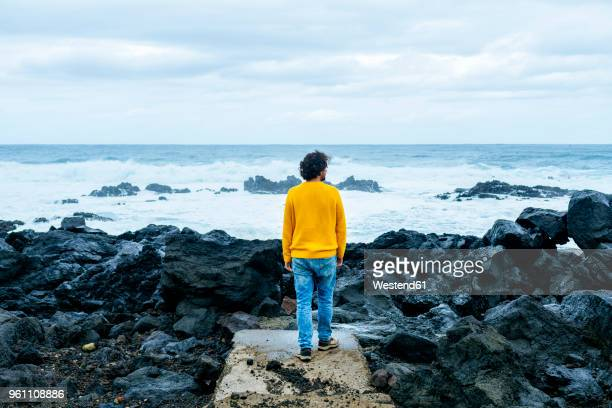 azores, sao miguel, rear view of man looking at the sea from stony coast - las azores fotografías e imágenes de stock