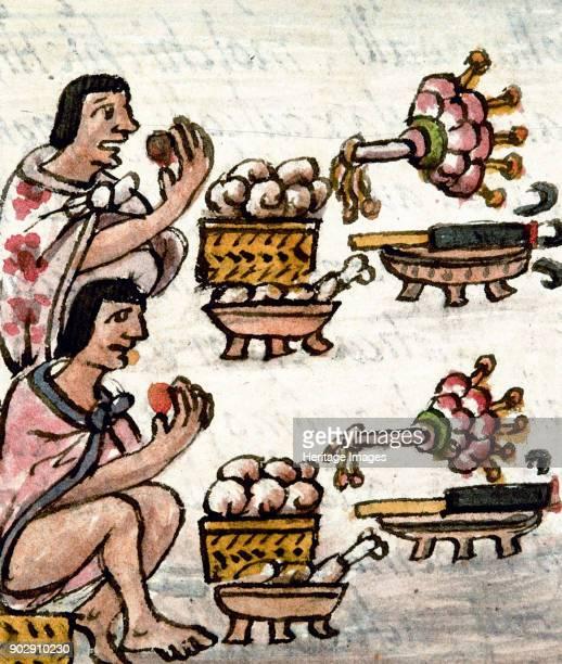 Aztec cuisine From Historia General de las Cosas de la Nueva España by Bernardino de Sahagún Found in the Collection of Biblioteca Medicea Laurenziana