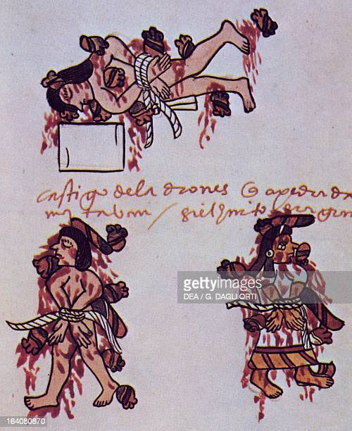 Aztec human sacrifice illustration from a replica of Codex Tudela 1533 Central America 16th century Madrid Museo De America