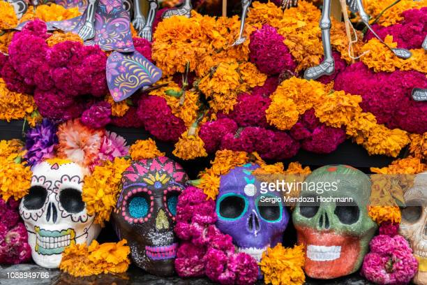 aztec marigold flowers - or cempasúchil - and skulls in day of the dead celebrations altar decorations - mexico city, mexico - dia de muertos fotografías e imágenes de stock