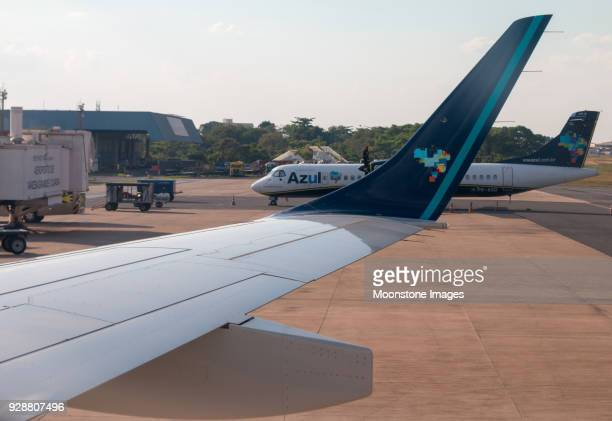 azul brazilian airlines in cuiabá airport, brazil - cuiabá stock photos and pictures
