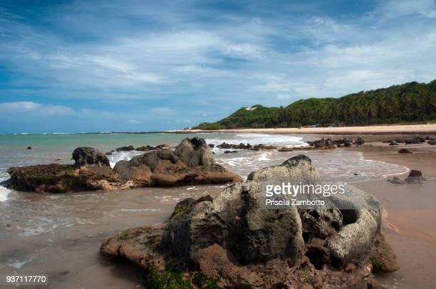 Baía Formosa beach, Rio Grande do Norte, Brazil