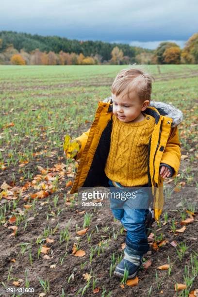 babies day out - babyhood stock pictures, royalty-free photos & images