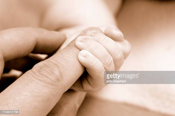 babies hand holding adults finger