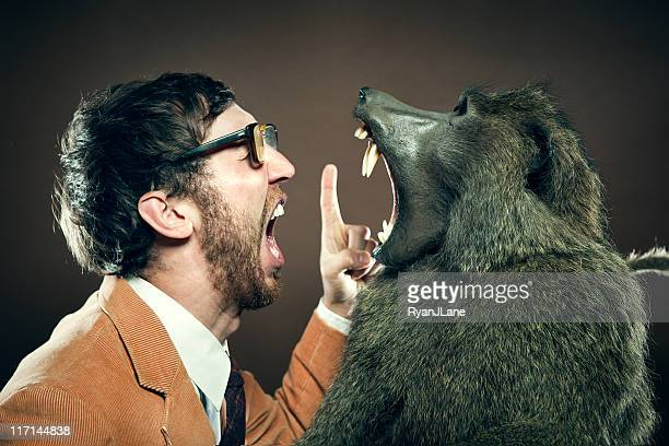 baboon and man in yelling match - baboon stock pictures, royalty-free photos & images