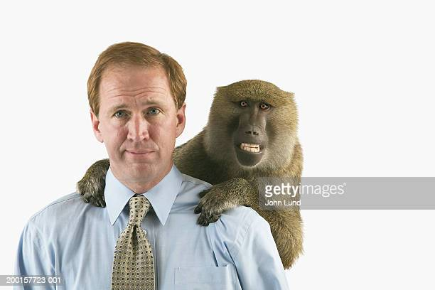 baboon on businessman's back - monkey man stock pictures, royalty-free photos & images