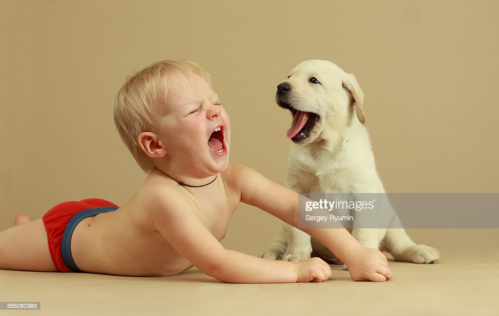 baby and puppy the duet stock photo getty images