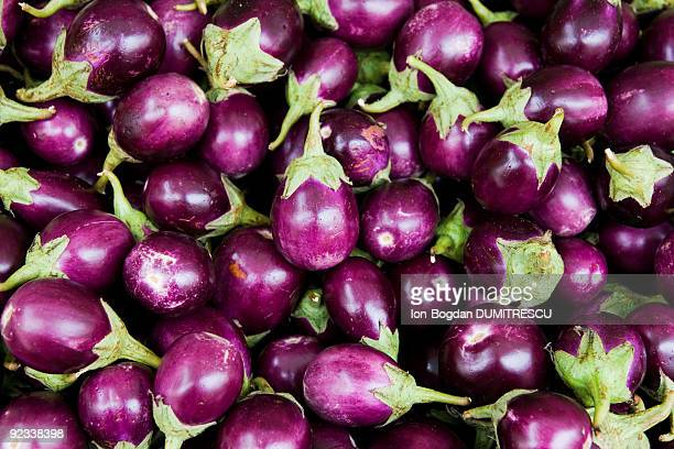 baby aubergine - eggplant stock photos and pictures