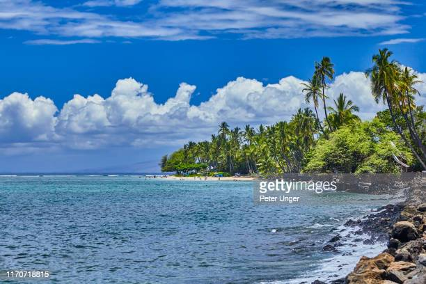 baby beach at the town of lahaina,maui,hawaii,usa - pacific ocean stock pictures, royalty-free photos & images