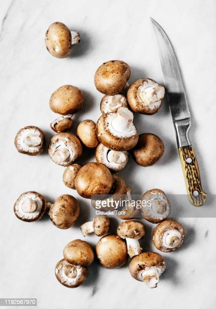 baby bella mushrooms on marble cutting board - edible mushroom stock pictures, royalty-free photos & images