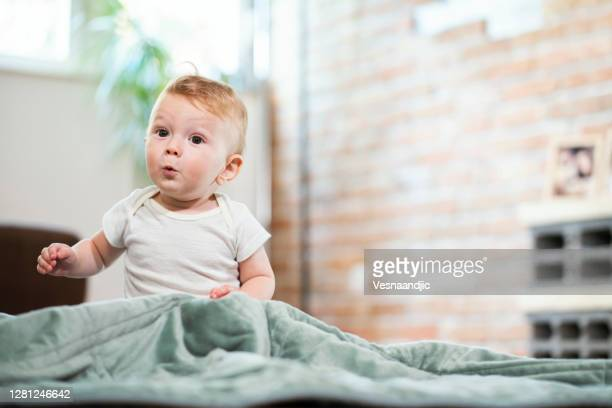 baby boy at home - infant bodysuit stock pictures, royalty-free photos & images