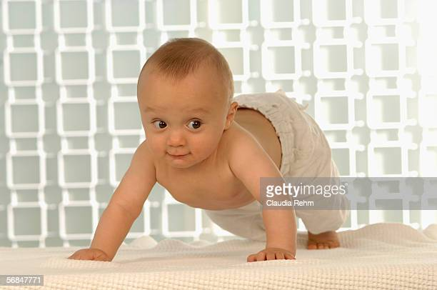 baby boy (6-11 months) crawling - 6 11 months stock pictures, royalty-free photos & images