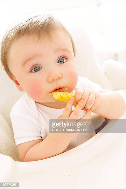 baby boy (6-11 months) eating crisp - 6 11 months stock pictures, royalty-free photos & images