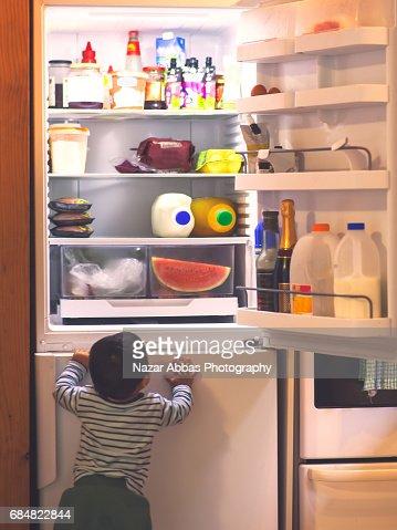 Baby Boy Exploring Refrigerator.