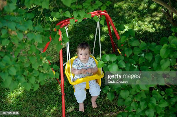 baby boy on garden swing - crausby stock pictures, royalty-free photos & images