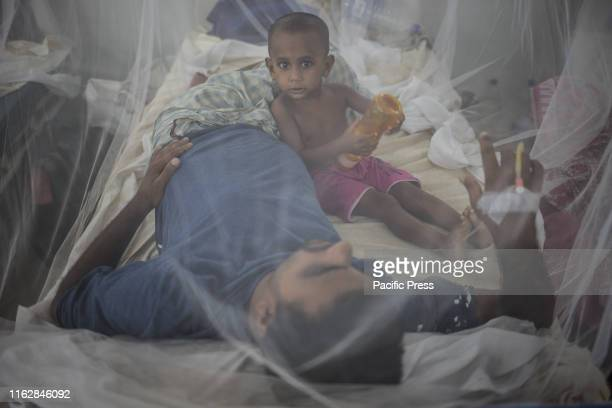 A baby boy playing inside mosquito net with his father who is a dengue patient Official report says at least 23 people died because of dengue but...