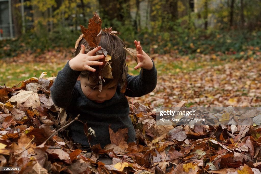 Baby Boy Playing With Fallen Autumn Leaves In Yard : Stock Photo