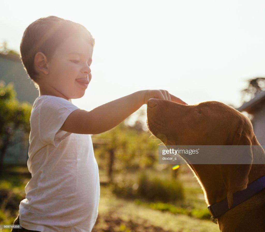 Baby junge spielt mit seinem Hund : Stock-Foto