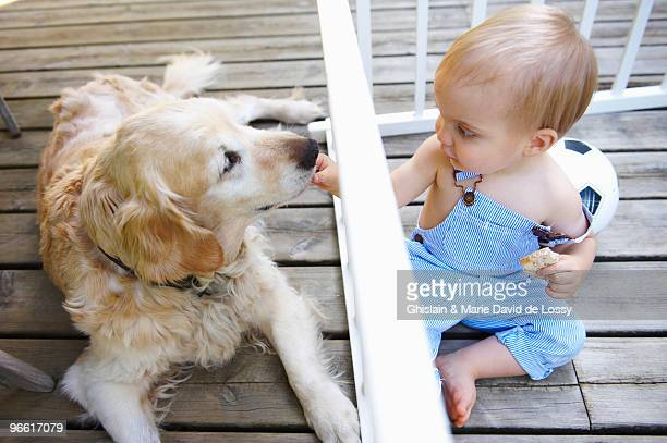 Baby boy playing with the family dog