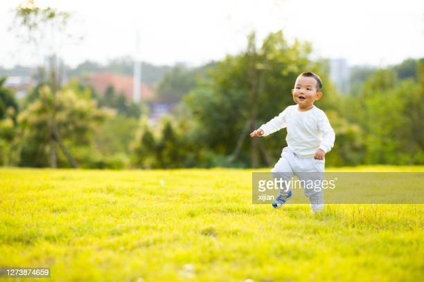baby boy running on lawn in autumn - gras stock pictures, royalty-free photos & images