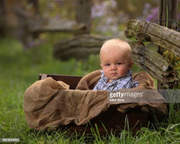 Baby boy (12-23 months) sitting in box
