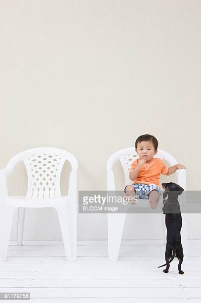 Baby boy sitting on chair and dog trying to climb chair