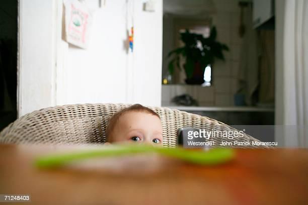 Baby boy (12-18 months) sitting on chair
