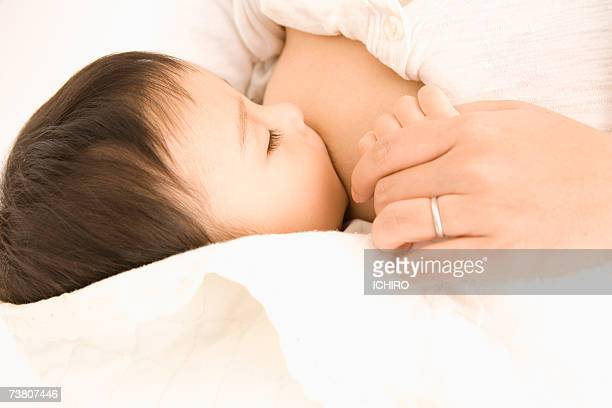baby boy (9-12 months) sucking mother's nipple, close-up - japanese breastfeeding stock pictures, royalty-free photos & images