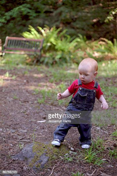 baby boy walking - jessamyn harris stock pictures, royalty-free photos & images