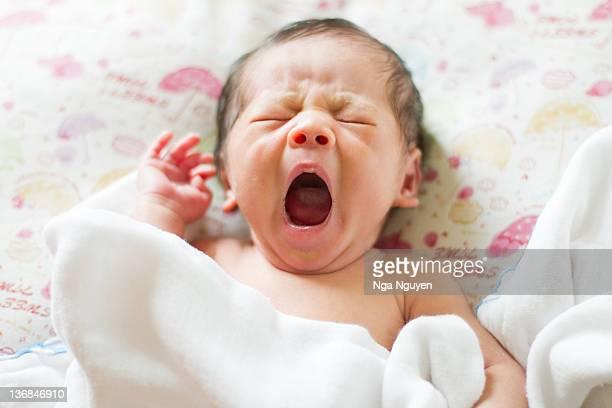 baby boy yawning - nga nguyen stock pictures, royalty-free photos & images
