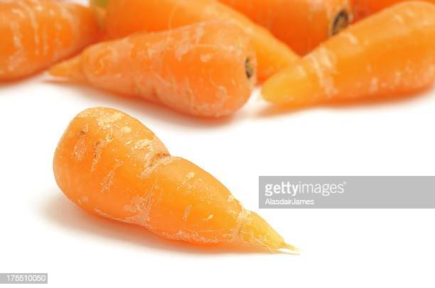 Baby Carrot close-up