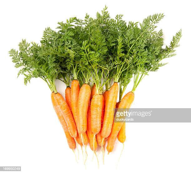 Baby Carrots Bunch Isolated on White