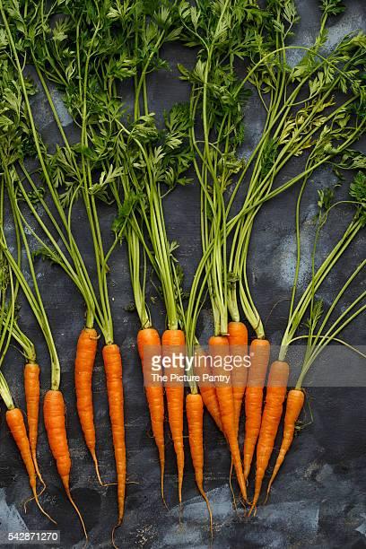 Baby Carrots, farm fresh