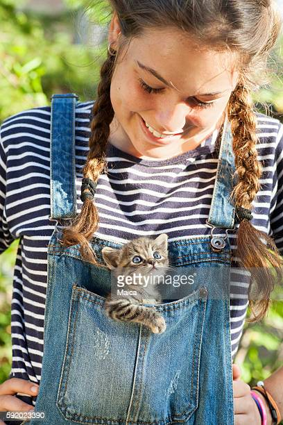 baby cat in jumper pocket - gattini appena nati foto e immagini stock