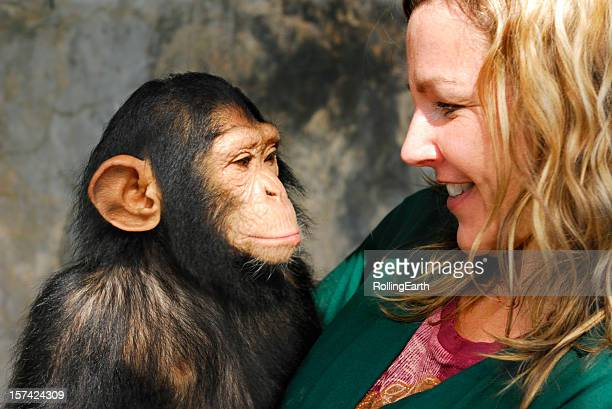 baby chimp and handler - primate stock pictures, royalty-free photos & images