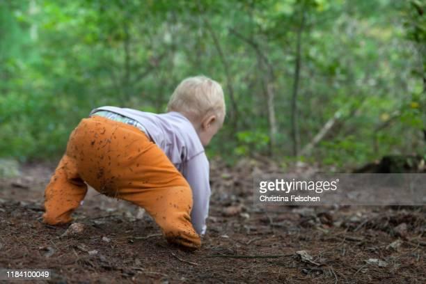 baby crawling on a forest path - christina felschen - fotografias e filmes do acervo