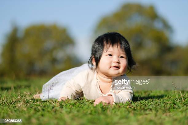baby crawling on grass in park - cute little asian girls stock photos and pictures