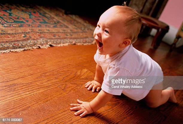 Baby Crawls along Wooden Floor