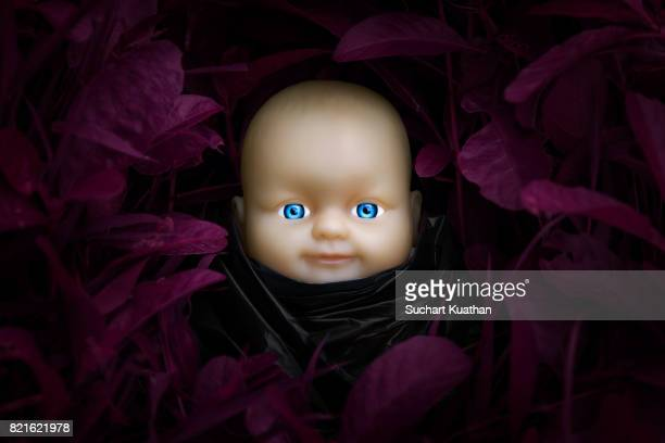 baby doll wearing black dress stay in the thick growth of grass - ベビードールワンピース ストックフォトと画像