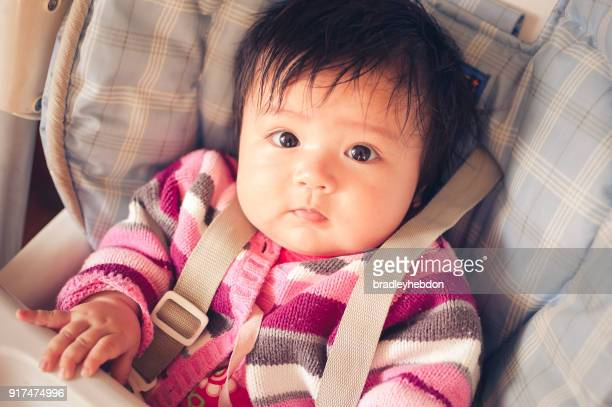 baby eurasian girl sitting in high chair - strap stock pictures, royalty-free photos & images