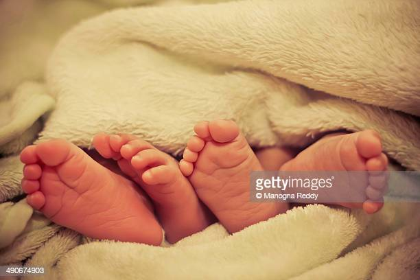 Baby feet of twins