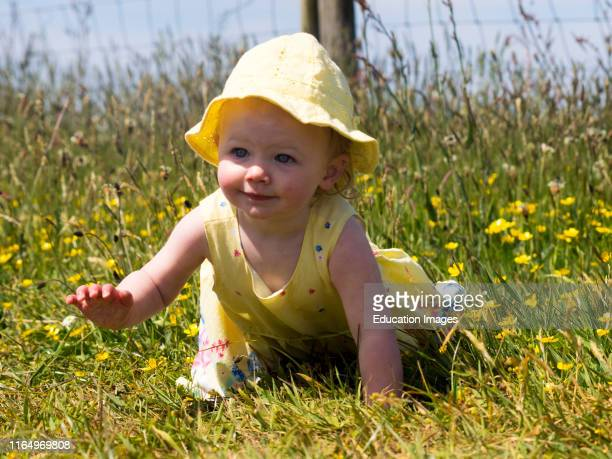 Baby girl crawling in the long grass
