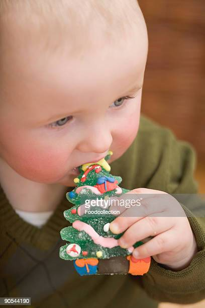 baby girl (0-11 months) eating jelly christmas tree - 0 11 monate stock-fotos und bilder