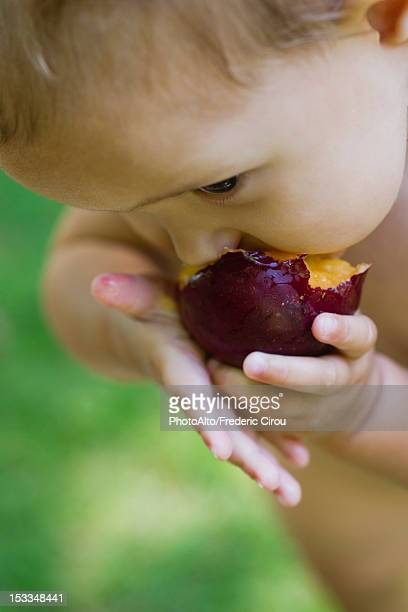Baby girl eating plum, cropped