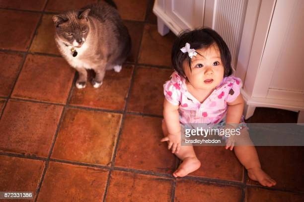 Baby girl hanging out with pet cat