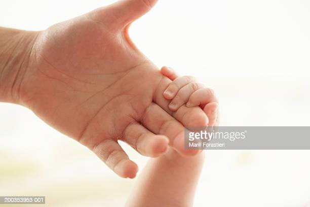 Baby girl (3-6 months) holding woman's hand, close-up