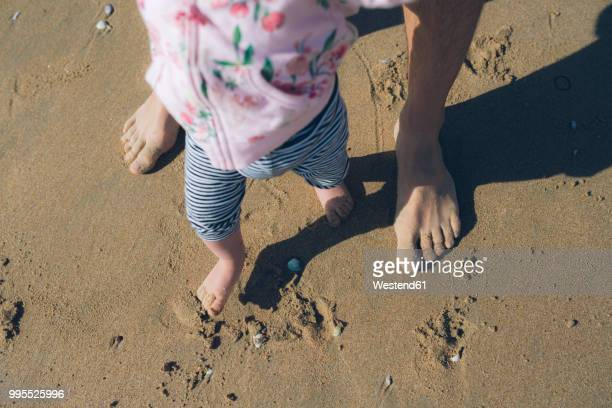 Baby girl learning to walk with her father on the beach, partial view