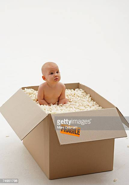 baby girl (3-6 months) lying in box of packing foam - vulnerability stock pictures, royalty-free photos & images