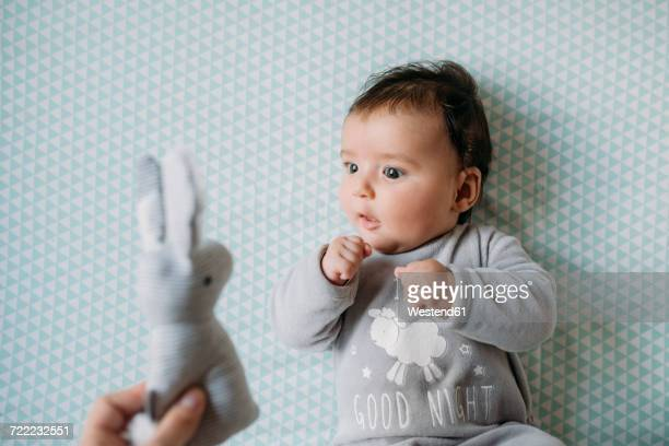 Baby girl lying on crib looking at hand holding toy bunny