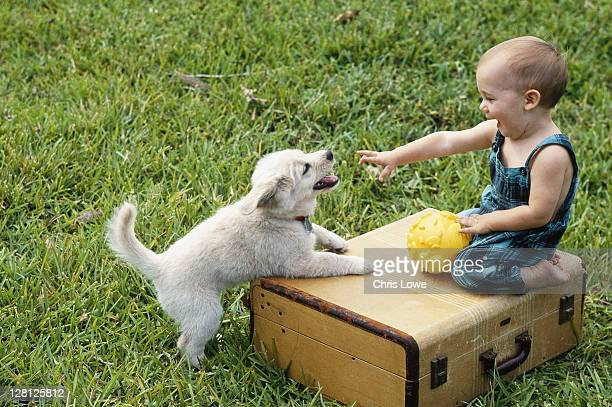 Baby girl playing with puppy